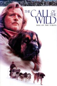 The Call of the Wild: Dog of the Yukon Online Lektor PL cda