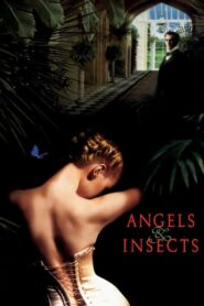 Angels and Insects Online Lektor PL cda