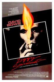 Ziggy Stardust and the Spiders From Mars Online Lektor PL cda